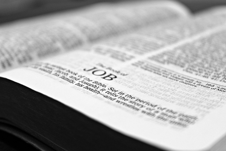 Examples Of Long Suffering In The Bible