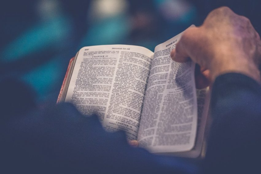 Bible Verses About Cursing and Swearing
